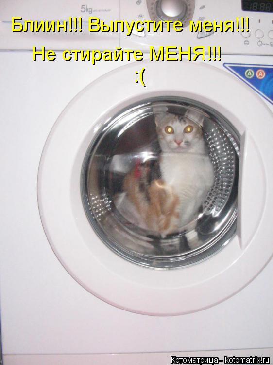 Котоматрица: Блиин!!! Выпустите меня!!! Не стирайте МЕНЯ!!! :(