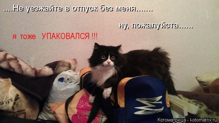 Котоматрица: ....Не уезжайте в отпуск без меня.......   ну, пожалуйста......  я  тоже   УПАКОВАЛСЯ !!!