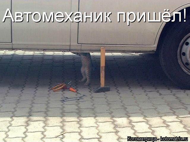 Котоматрица: Автомеханик пришёл!