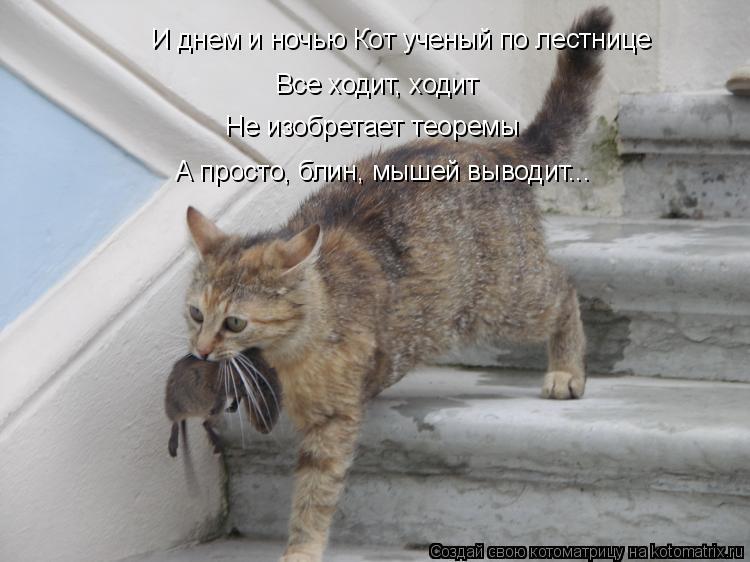 Котоматрица: И днем и ночью Кот ученый по лестнице Все ходит, ходит Не изобретает теоремы А просто, блин, мышей выводит...