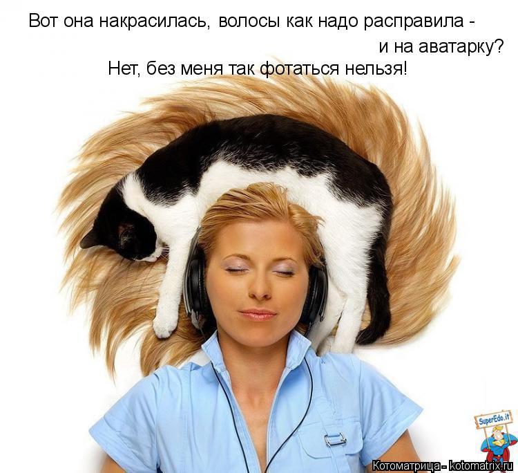 Котоматрица: Вот она накрасилась, волосы как надо расправила - и на аватарку? Нет, без меня так фотаться нельзя!