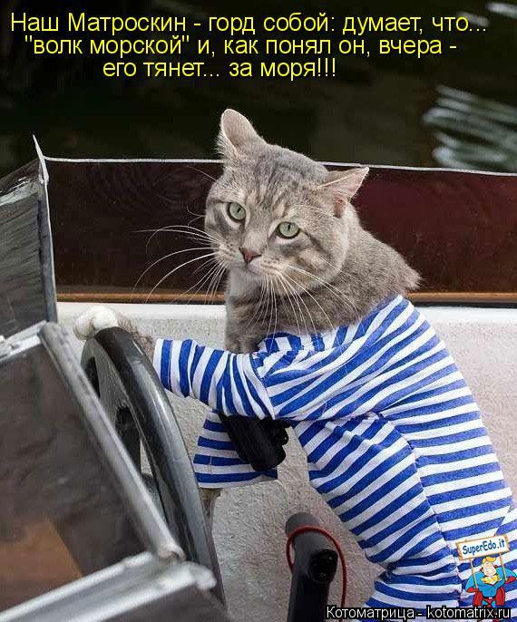 """Котоматрица: Наш Матроскин - горд собой: думает, что...  """"волк морской"""" и, как понял он, вчера - его тянет... за моря!!!"""
