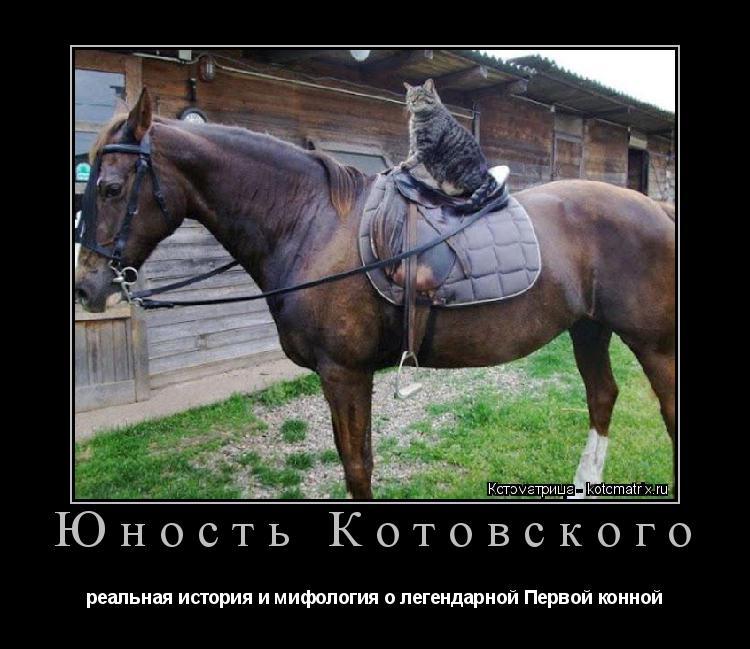 Котоматрица: Юность Котовского реальная история и мифология о легендарной Первой конной