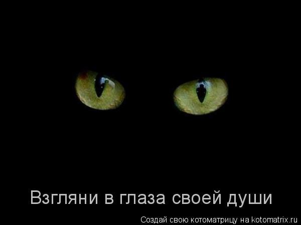 Котоматрица: Взгляни в глаза своей души