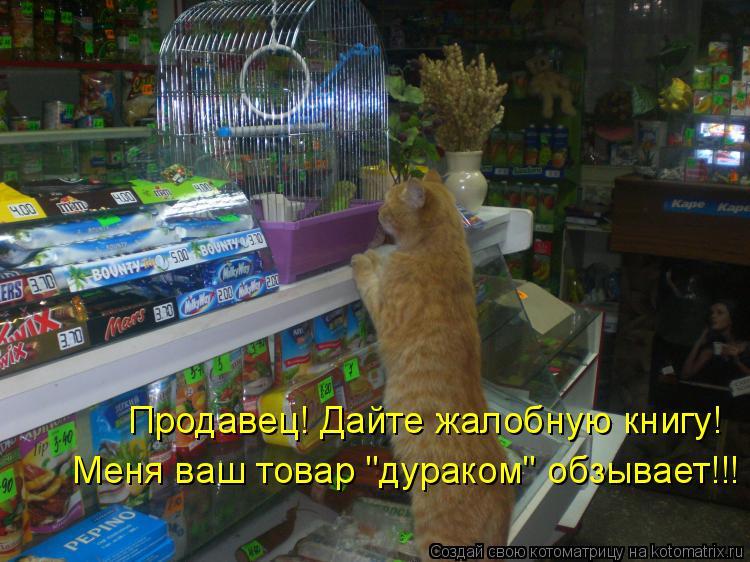 "Котоматрица: Продавец! Дайте жалобную книгу! Меня ваш товар ""дураком"" обзывает!!!"