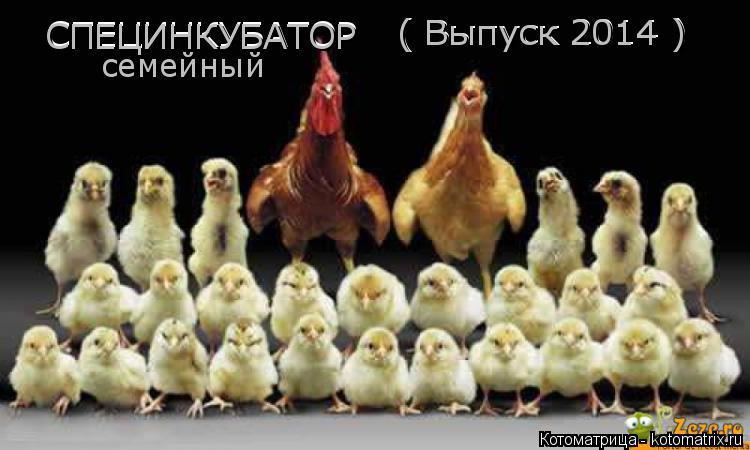 Котоматрица: СПЕЦИНКУБАТОР СПЕЦИНКУБАТОР ( Выпуск 2014 ) ( Выпуск 2014 ) семейный