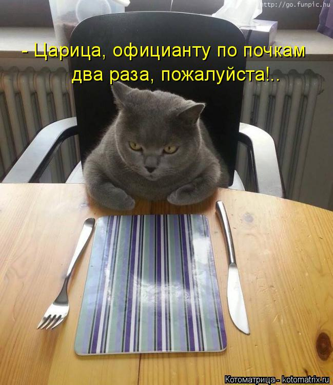 Котоматрица: - Царица, официанту по почкам  два раза, пожалуйста!..