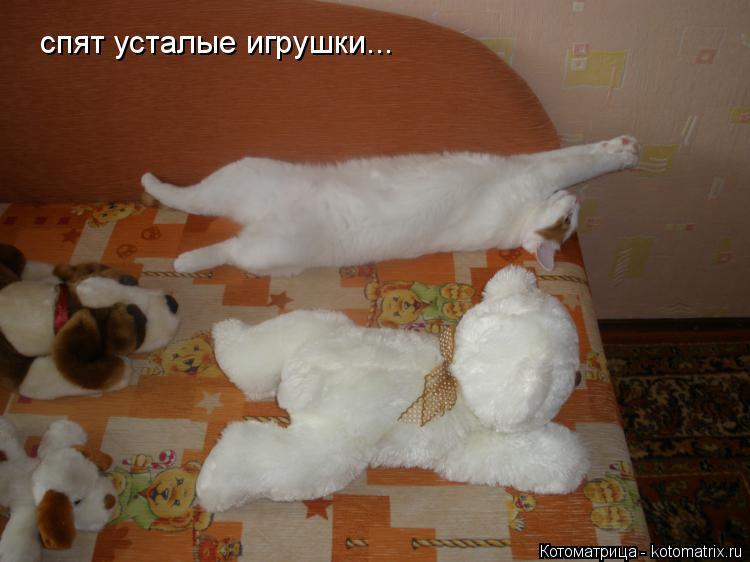 Котоматрица: спят усталые игрушки...