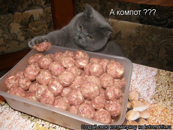 Котоматрица: А компот ???