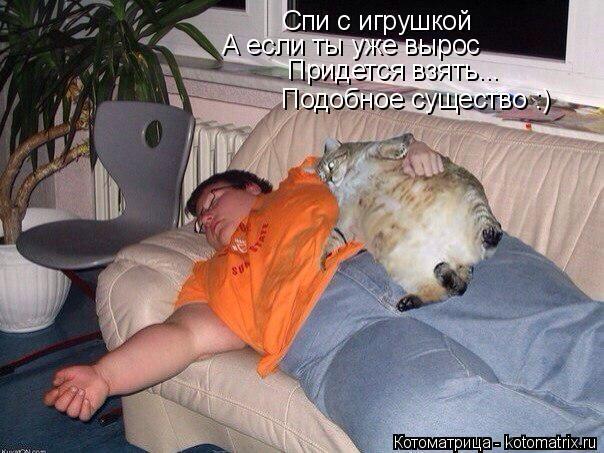 Котоматрица: Спи с игрушкой А если ты уже вырос Придется взять... Подобное существо :)