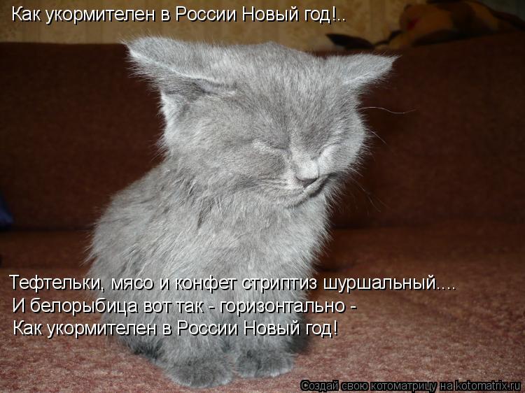 Котоматрица: Как укормителен в России Новый год!.. Тефтельки, мясо и конфет стриптиз шуршальный.... И белорыбица вот так - горизонтально - Как укормителен в
