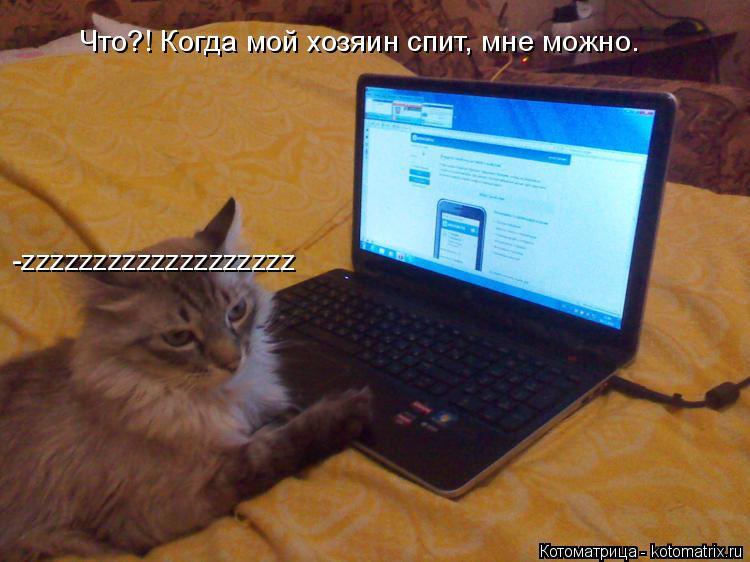 Котоматрица: Что?! Когда мой хозяин спит, мне можно. -zzzzzzzzzzzzzzzzzzz