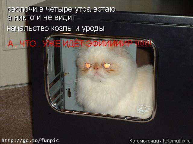 Котоматрица: сволочи в четыре утра встаю  а никто и не видит начальство козлы и уроды А , ЧТО , УЖЕ ИДЁТ ЭФИИИИИР !!!!!!!