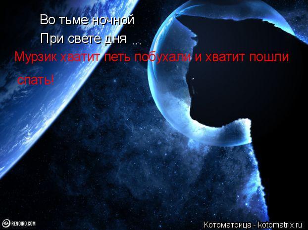 Котоматрица: Во тьме ночной При свете дня ... Мурзик хватит петь побухали и хватит пошли  спать!