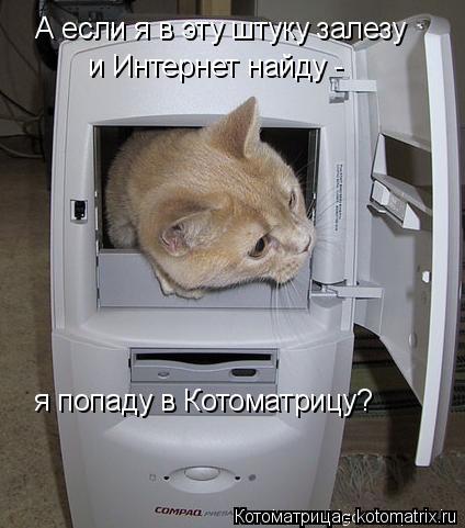 Котоматрица: А если я в эту штуку залезу и Интернет найду - я попаду в Котоматрицу?