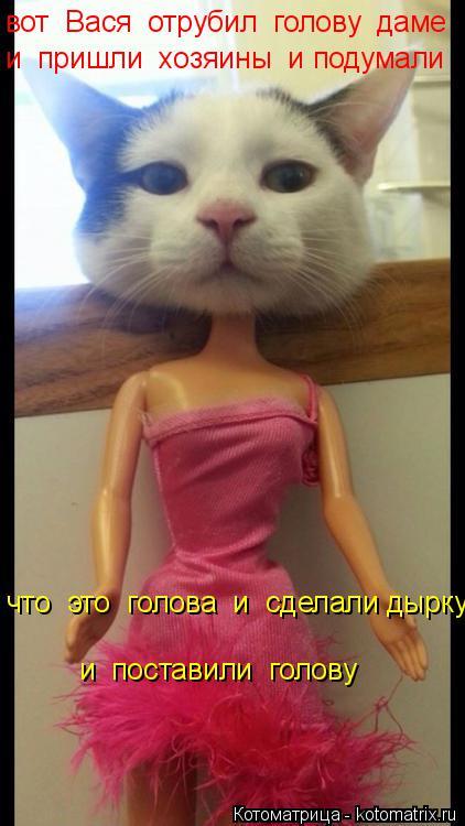 Котоматрица: вот  Вася  отрубил  голову  даме   и  пришли  хозяины  и подумали   что  это  голова  и  сделали дырку и  поставили  голову