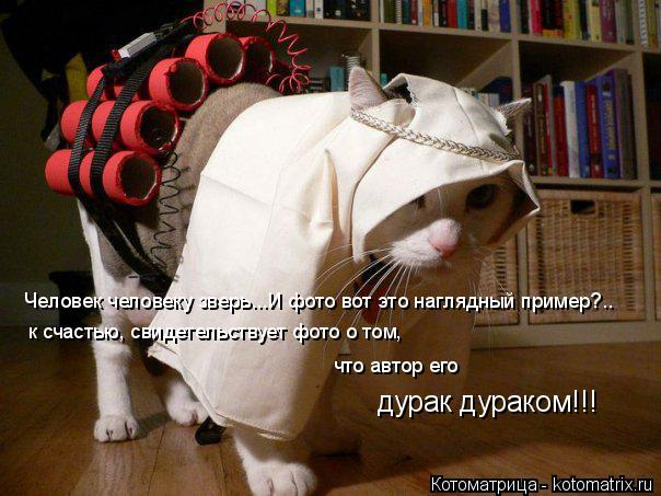 Котоматрица: Человек человеку зверь...И фото вот это наглядный пример?.. к счастью, свидетельствует фото о том, что автор его  дурак дураком!!!