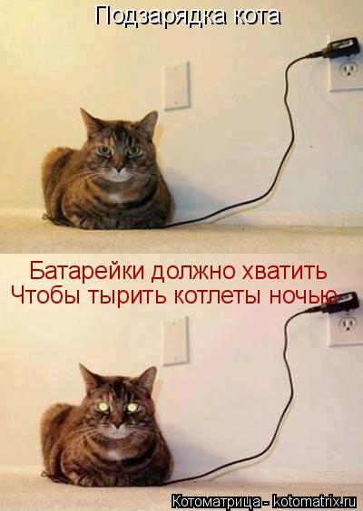 Котоматрица: Подзарядка кота Батарейки должно хватить Чтобы тырить котлеты ночью