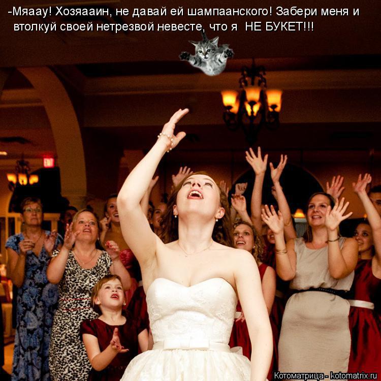 Котоматрица: -Мяаау! Хозяааин, не давай ей шампаанского! Забери меня и  втолкуй своей нетрезвой невесте, что я  НЕ БУКЕТ!!!