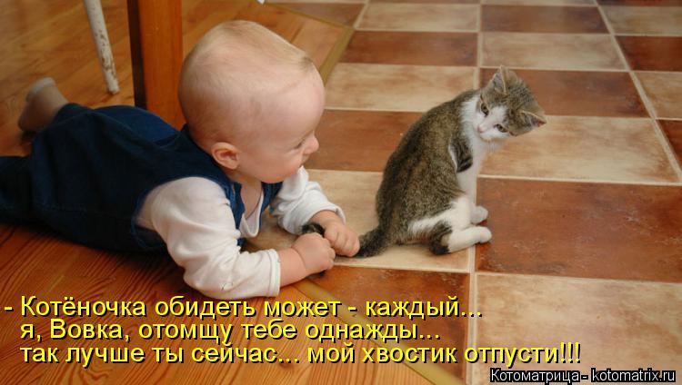 Котоматрица: - Котёночка обидеть может - каждый... я, Вовка, отомщу тебе однажды... так лучше ты сейчас... мой хвостик отпусти!!!
