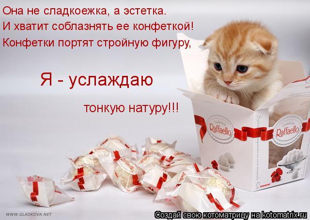 Котоматрица: Она не сладкоежка, а эстетка. И хватит соблазнять ее конфеткой! Конфетки портят стройную фигуру, Я - услаждаю тонкую натуру!!!