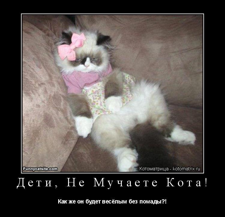 Котоматрица: Дети, Не Мучаете Кота! Как же он будет весёлым без помады?!