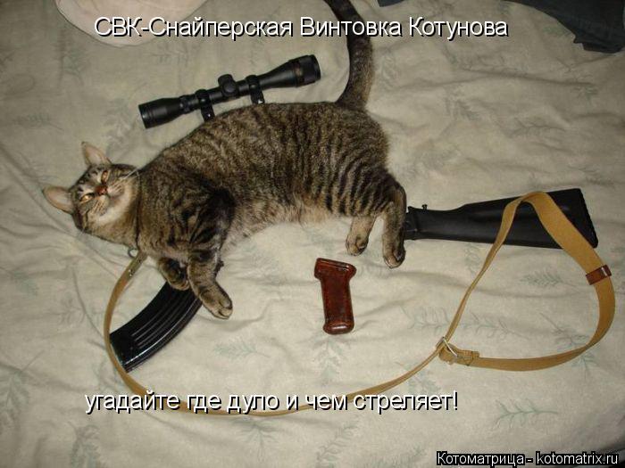 Котоматрица: СВК-Снайперская Винтовка Котунова угадайте где дуло и чем стреляет!