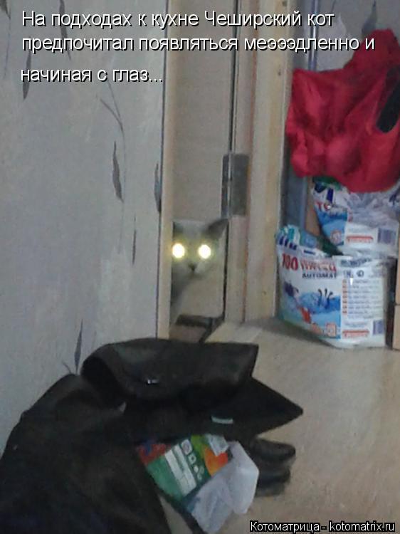 Котоматрица: На подходах к кухне Чеширский кот предпочитал появляться меэээдленно и начиная с глаз...