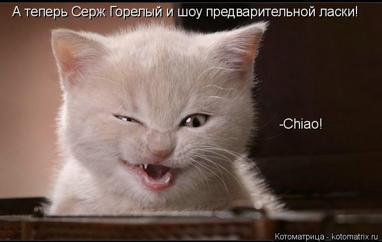 Котоматрица: А теперь Серж Горелый и шоу предварительной ласки! -Chiao!