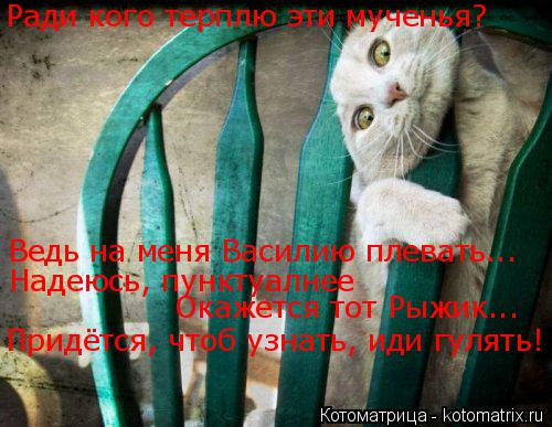 Котоматрица: Ради кого терплю эти мученья? Ведь на меня Василию плевать... Надеюсь, пунктуалнее Окажется тот Рыжик... Придётся, чтоб узнать, иди гулять!