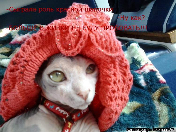 Котоматрица: -Cыграла роль красной шапочки -Ну как? -БОЛЬШЕ В ЖИЗКИ НЕ БУДУ ПРОБОВАТЬ!!!