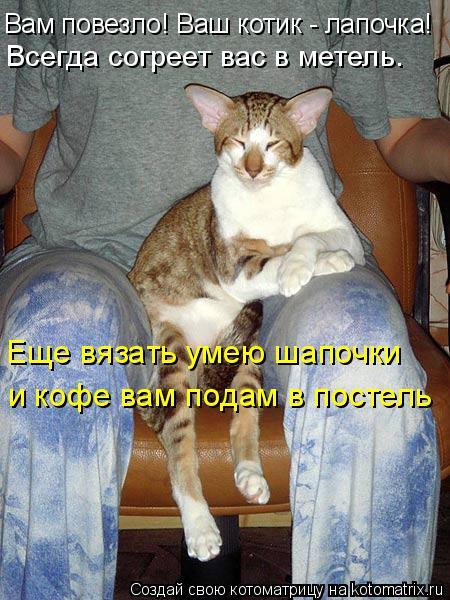 Котоматрица: Вам повезло! Ваш котик - лапочка! Еще вязать умею шапочки и кофе вам подам в постель Всегда согреет вас в метель.