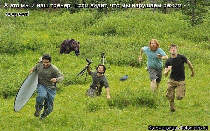 Котоматрица: А это мы и наш тренер. Если видит, что мы нарушаем режим -  звереет!