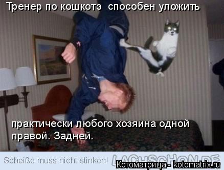 Котоматрица: Тренер по кошкотэ  способен уложить практически любого хозяина одной  правой. Задней.