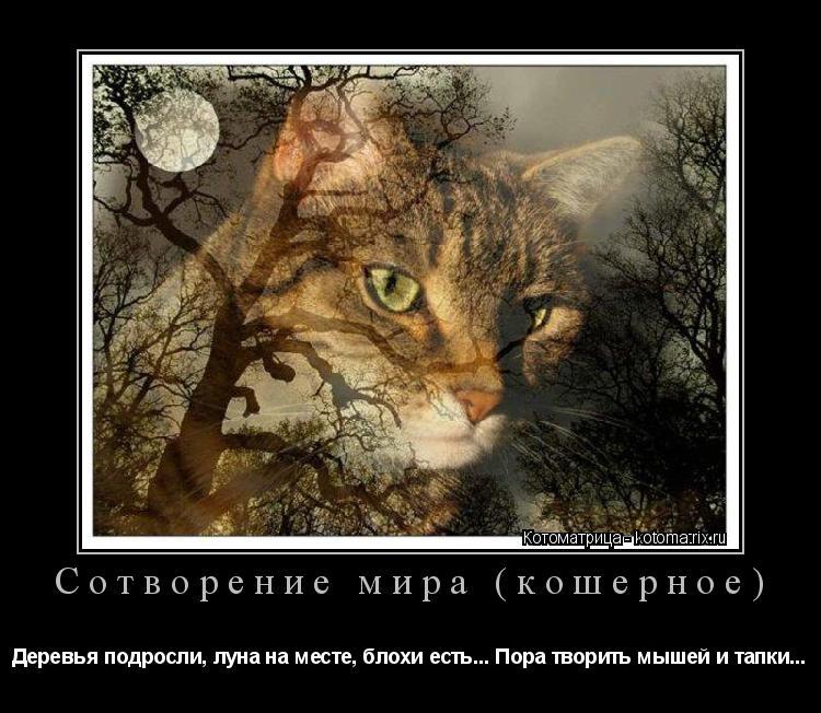 Котоматрица: Сотворение мира (кошерное) Деревья подросли, луна на месте, блохи есть... Пора творить мышей и тапки...