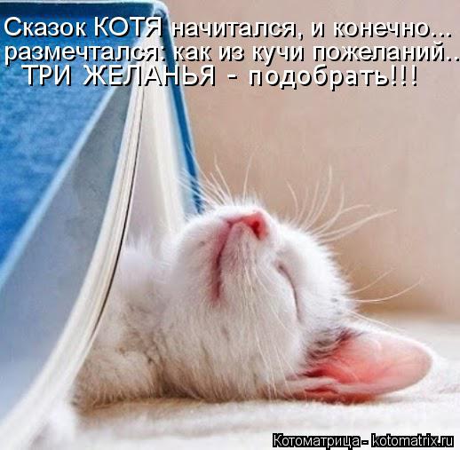 Котоматрица: Сказок КОТЯ начитался, и конечно... размечтался: как из кучи пожеланий... ТРИ ЖЕЛАНЬЯ - подобрать!!!