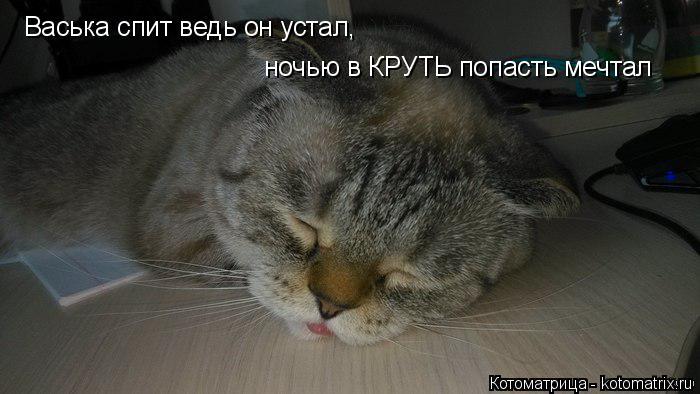 Котоматрица: Васька спит ведь он устал, ночью в КРУТЬ попасть мечтал