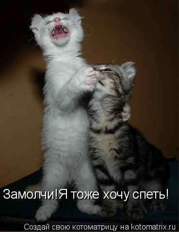 Котоматрица: Замолчи!Я тоже хочу спеть!