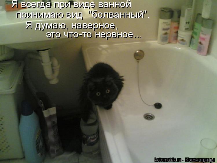 """Котоматрица: Я всегда при виде ванной принимаю вид  """"болванный"""". Я думаю, наверное, это что-то нервное..."""