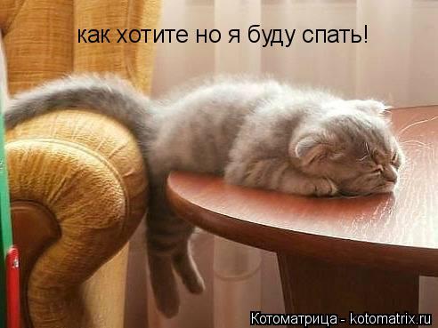 Котоматрица: как хотите но я буду спать!