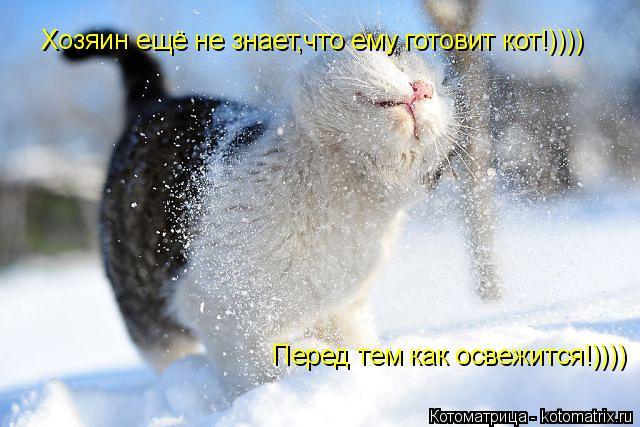 Котоматрица: Хозяин ещё не знает,что ему готовит кот!)))) Перед тем как освежится!))))