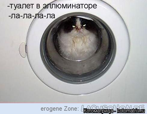 Котоматрица: -туалет в эллюминаторе -ла-ла-ла-ла