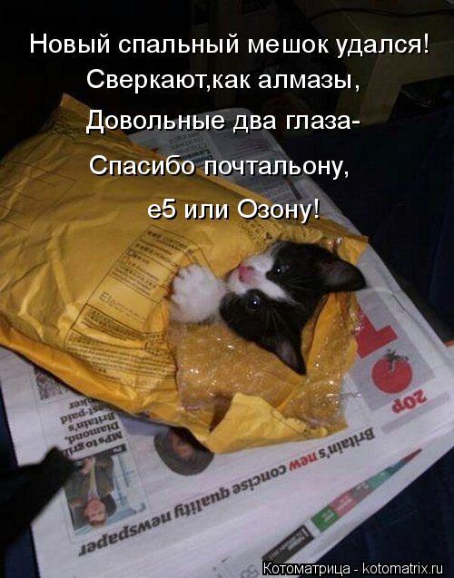 Котоматрица: Новый спальный мешок удался! Сверкают,как алмазы, Довольные два глаза- Спасибо почтальону, е5 или Озону!