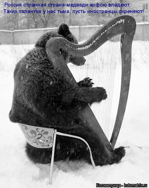 Котоматрица: Россия странная страна-медведи арфою владеют, Таких талантов у нас тьма, пусть иностранцы охренеют!