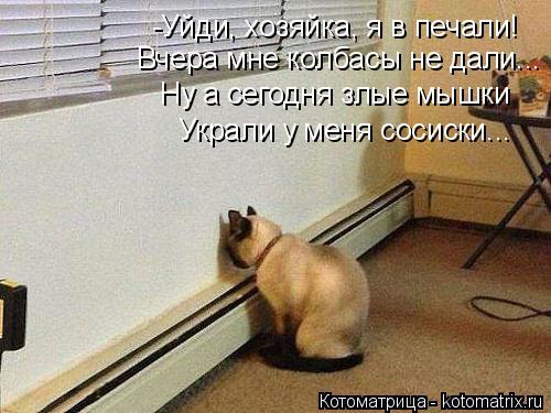 Котоматрица: -Уйди, хозяйка, я в печали! Вчера мне колбасы не дали... Ну а сегодня злые мышки Украли у меня сосиски...