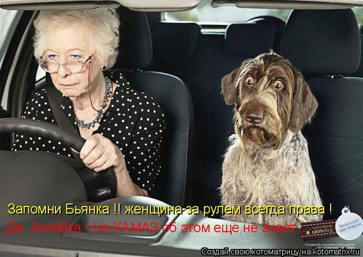 Котоматрица: Запомни Бьянка !! женщина за рулем всегда права ! Да ,Хозяйка ! Но КАМАЗ об этом еще не знает...