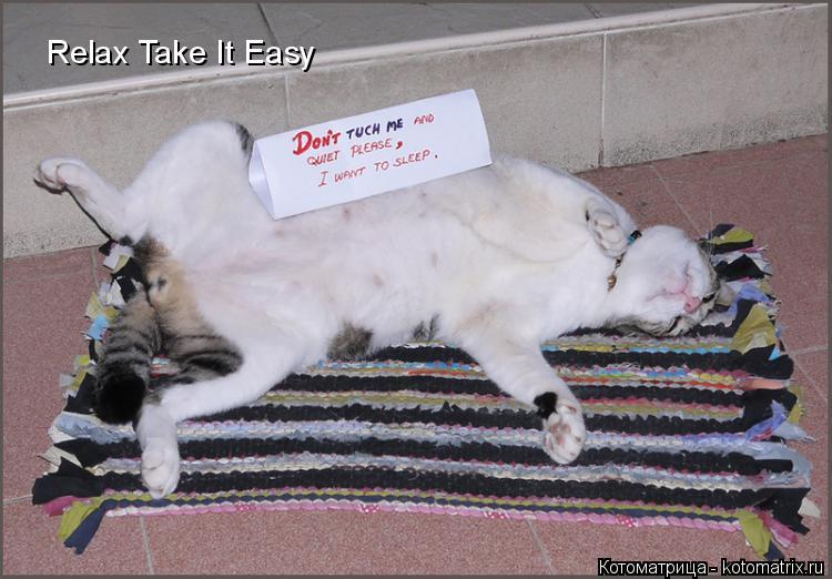 Котоматрица: Relax Take It Easy