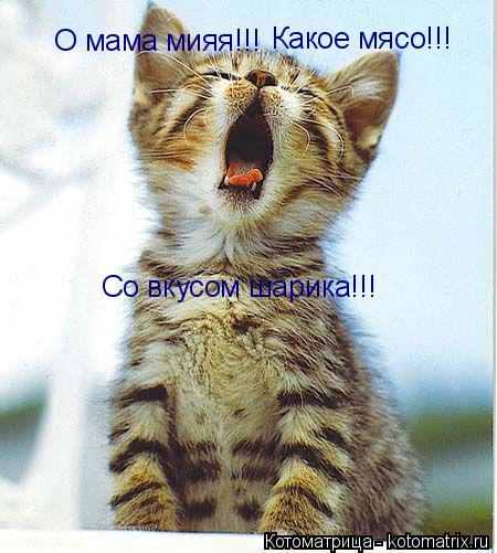 Котоматрица: О мама мияя!!! Какое мясо!!! Со вкусом шарика!!!