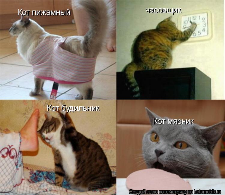 Котоматрица: Кот пижамный Кот будильник часовщик Кот мясник