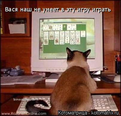Котоматрица: Вася наш не умеет в эту игру играть